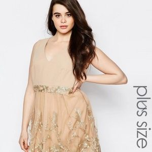 Lovedrobe Plus Skater Dress With Lace Border